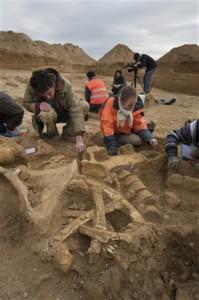 Kosti mamuta